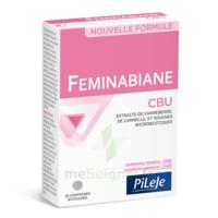 Pileje Feminabiane Cbu 30 Comprimés Bicouches à Paris