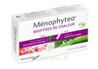 MENOPHYTEA BOUFFEES DE CHALEUR, bt 40 (20 + 20) à Paris
