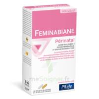 Pileje Feminabiane Périnatal 28 Gélules Blanches Et 28 Gélules Jaunes à Paris