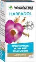 ARKOGELULES HARPAGOPHYTON, 150 gélules à Paris