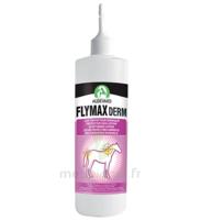 Audevard Flymax Derm 500ml à Paris