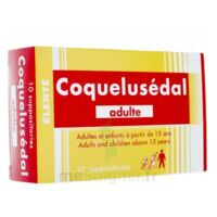 COQUELUSEDAL ADULTES, suppositoire à Paris