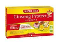 Superdiet Ginseng Gelée Royale Protect Bio Solution Buvable 20 Ampoules/15ml à Paris